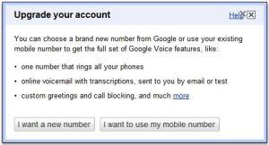 Google Voice 2