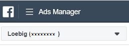 Facebook Ads Manager detail - top left-hand corner with company name and Ads Manager ID